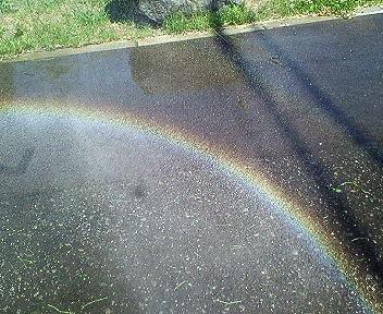 虹をつかまえろ